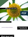 seth-godin-what-matters-now-2009.pdf