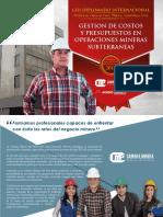 Gestion de Costos y Presupuestos en Operaciones Mineras Subterraneas