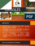 EXPOSICIÓN OXISOLES