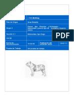 Bulldog Inglés.pdf