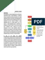 método científico- biologi.pdf