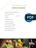 Fundamentos de Vitivinicultura