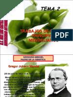 tema2trabajosdemendel-110803104442-phpapp02