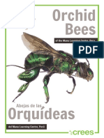 Orchid Bees of the Manu Learning Centre, Peru