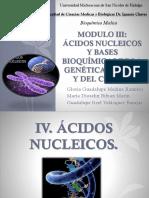 BIOQUIMICA Acidos Nucleicos 19