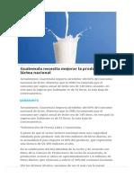 Guatemala Necesita Mejorar La Producción Láctea Nacional - Revista Estrategia & Negocios