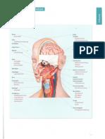 Menschen Beruf 145 150.pdf
