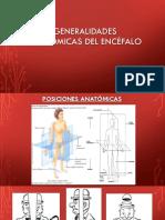 Clase 1. Generalidades Anatómicas Del Encefalo