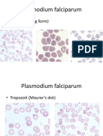 4-1-praktikum-parasit-malaria-dan-mikrofilaria.pptx