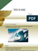 Tsunami (1)