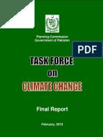 TFCC Final Report 2010