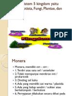 Klasifikasi Sistem 5 Kingdom Yaitu Monera, Protista