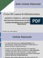Trapianto Cellule Staminali