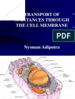 l1. the Cell Membrane 2011