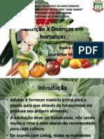 Nutrição x Doenças Em Hortaliças