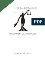Fundamentos Jur Dicos Da Pericia Judicial Do Trabalho