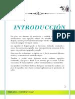 Informe Final de Terrazos in Situ y en Baldosas