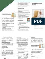 142161647-Triptico-Primeros-Auxilios-Word.pdf