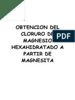 Informe Cloruro de Magnesio