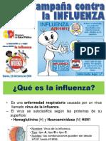 influenza-1.pdf
