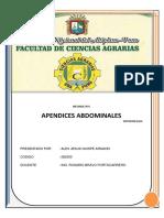apendices abdominales