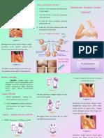 Leaflet Sadari.docx