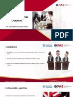 Derecho Procesal Laboral Sesión (2)