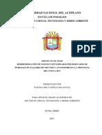Biorremediación y Contaminación Del Petroleo 29.12.17