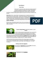 khasiat bunga2 pengobatan