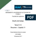 Tarea 14 Resumen cap.docx