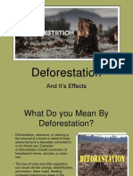 Deforestation and It's Effects