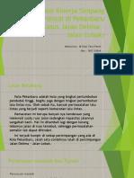 Analisis Kinerja Simpang Bersinyal Di Pekanbaru