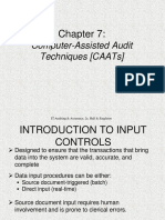 Chap07 - Computer-Assisted Auditing Tools and Techniques