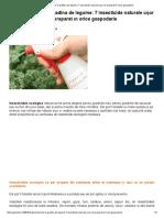 Tratamente Bio În Grădina de Legume_ 7 Insecticide Naturale Ușor de Preparat În Orice Gospodărie
