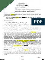 Richard Darling Affidavit