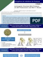 Inibidores de Proteases - Copia