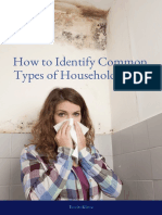 How to Identify Common Types of Household Mold