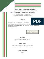 Tesis Gabriela Pauta