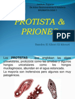 Clase ProtistaPriones
