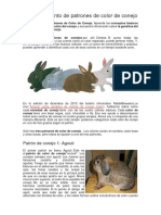 Reconocimiento de Patrones de Color de Conejo
