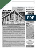 CNJ - 2013 Bas.pdf