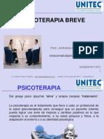 Psicoterapia Breve 2