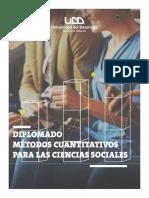 3. Brochure Diplomado