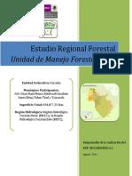 Estudio Regional Forestal 3106