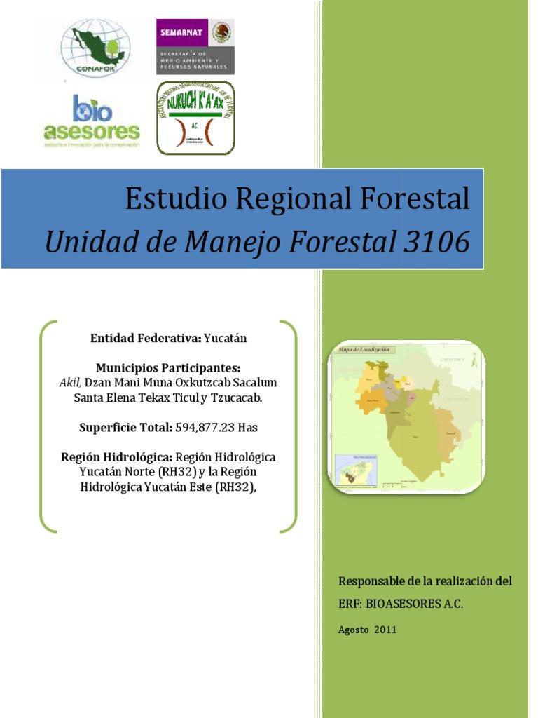 Estudio Regional Forestal 3106 78dd7f3688f
