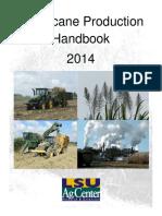production of sugarcane.pdf