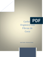 Carbon Organico Primera Presentación
