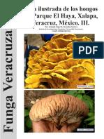Guia Ilustrada de los hongos del parque el Haya-III Xalapa, Veracruz Mexico. FUNGA VERACRUZANA 159.
