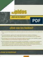 Lípidos(1)