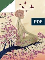 Meditacion Efecto Cerebral SCIAM